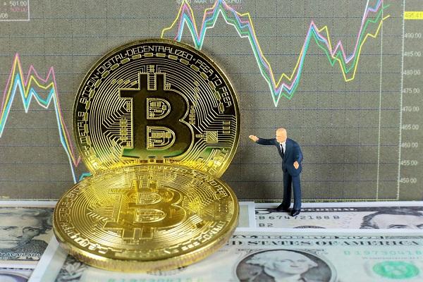 il bustore automatico di bitcoin funziona)
