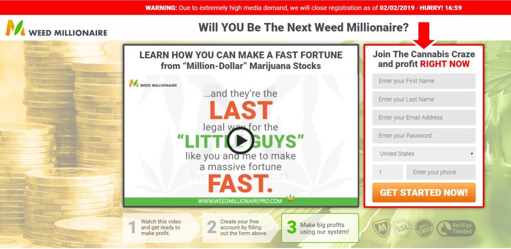 weed millionaire
